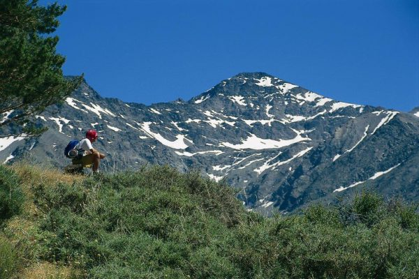 6000401A – Sierra Nevada