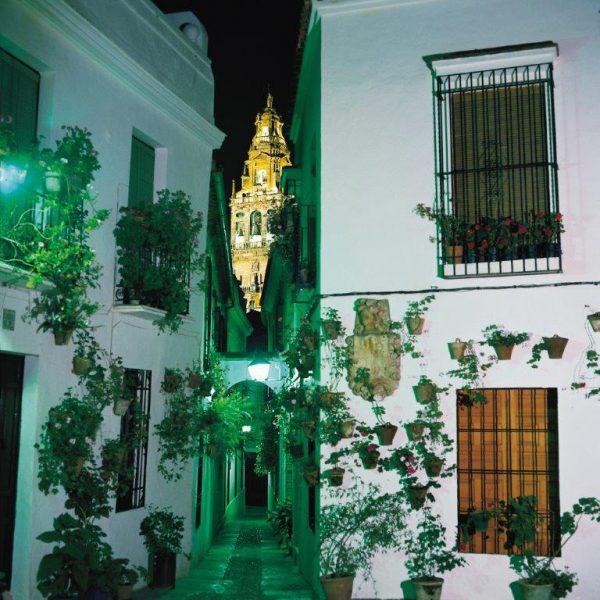 CORDOBA CALLE DE LAS FLORES 1400024A